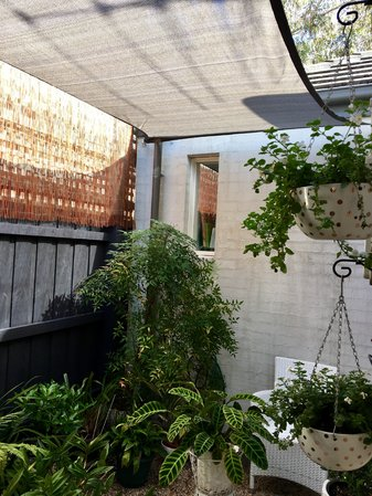 Thank Cherry for sending in your photo of your 2x3m Shady Lady Shade in grey. Providing some much needed shade for the plants, looks great.\\n\\n8/12/2016 8:22 PM